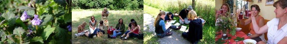 Gundermann Akademie - Gundermann Naturerlebnisschule